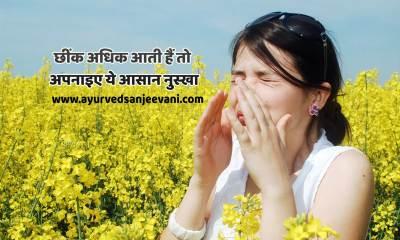 छींक - allergy in hindi