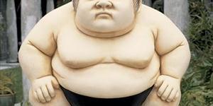 Perspective de Sumo-Sized
