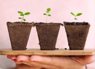 Iniciativas sostenibles