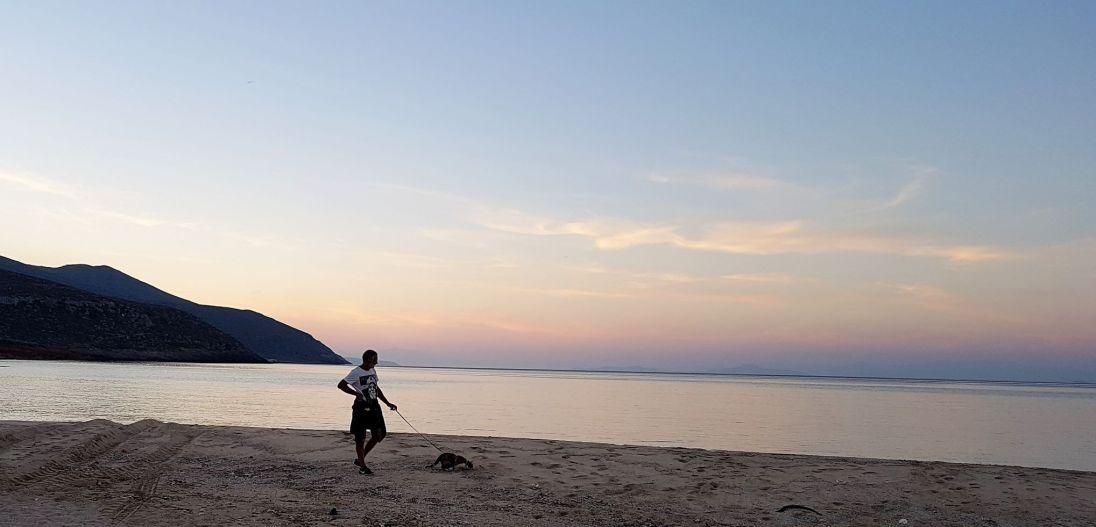 petite balade sur la plage avec Pom'