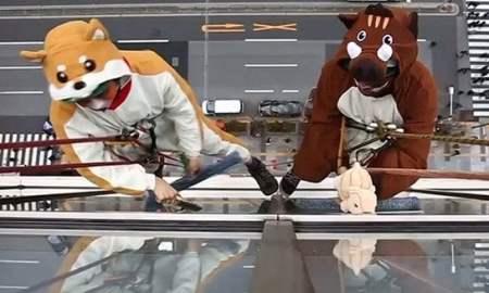 Շունն ու խոզը միասին պատուհան են լվացել