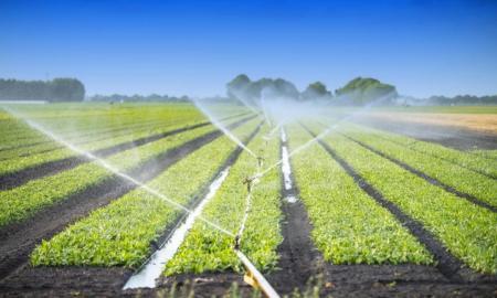 10 մլն եվրո կուղղվի Արարատի և Արմավիրի մարզերում գյուղատնտեսության զարգացմանը