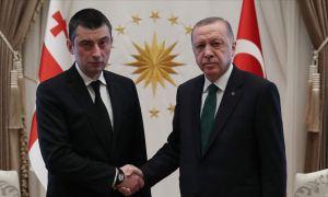Թուրքիայի նախագահը ընդունել է Վրաստանի վարչապետին