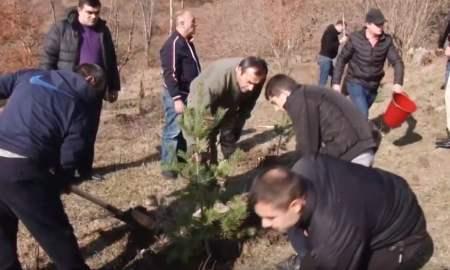 Անտառահատման դեմ Տավուշի ոստիկանների պայքարը․ տնկվել է 1000 ծառ (ՏԵՍԱՆՅՈւԹ)