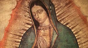 Basilica de Guadalupe en Vivo
