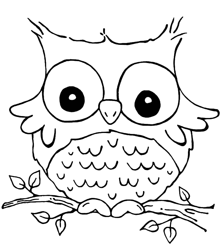 and print these owl coloring pages for free owl coloring pages