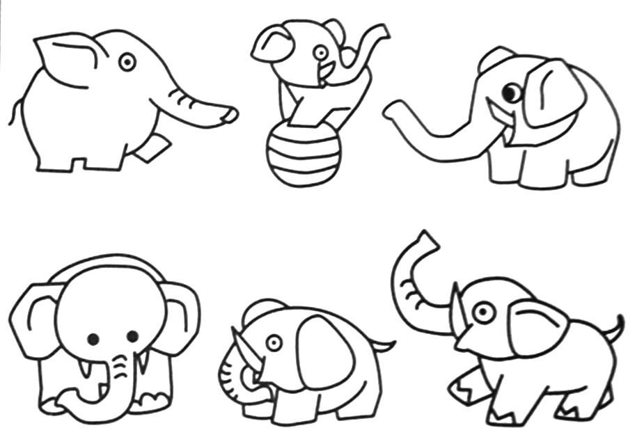 these pictures of jungle animals coloring pages for free pictures