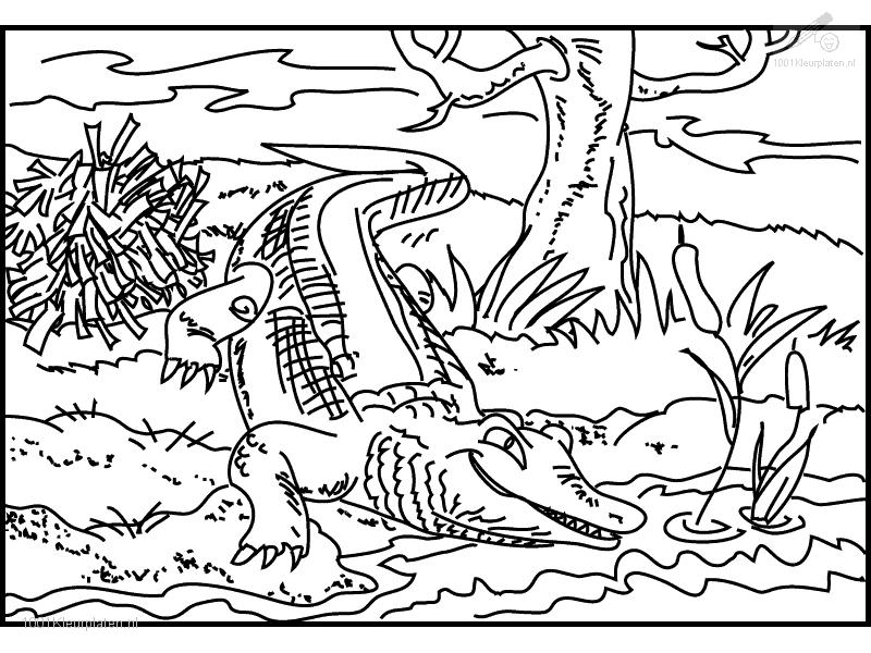 crocodile coloring page az coloring pages