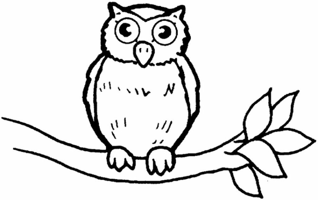 baby owl coloring pages az coloring pages