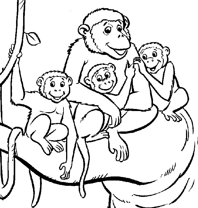and print these monkey for kids coloring pages for free monkey