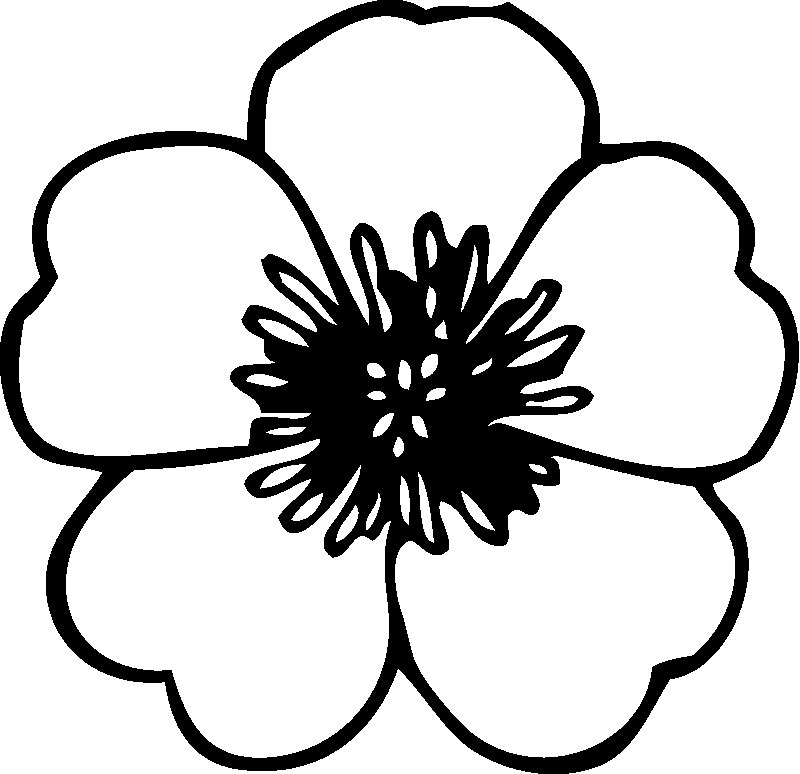 flowers coloring pages page 3 printable coloring flowers flower