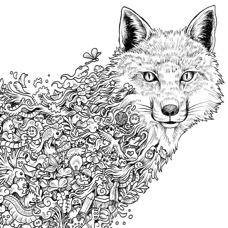 animal coloring pages on pinterest coloring az coloring pages