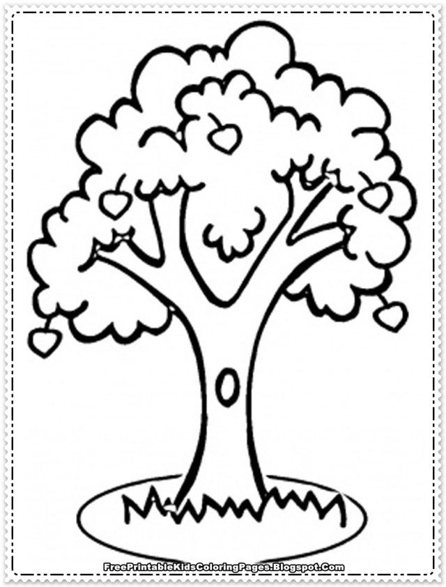 apple tree coloring sheet az coloring pages