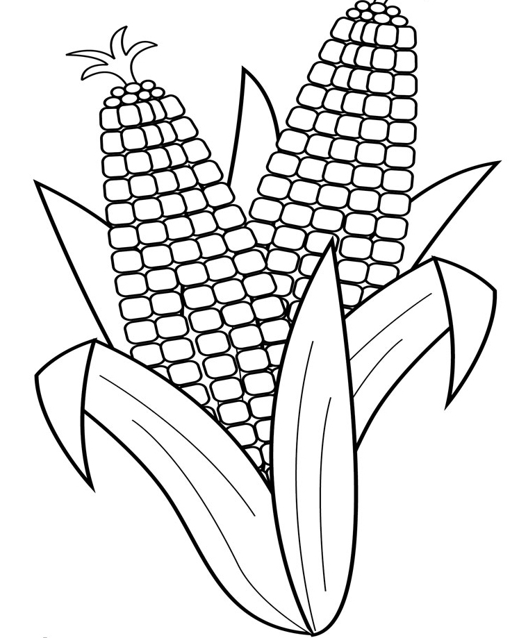 corn coloring page az coloring pages