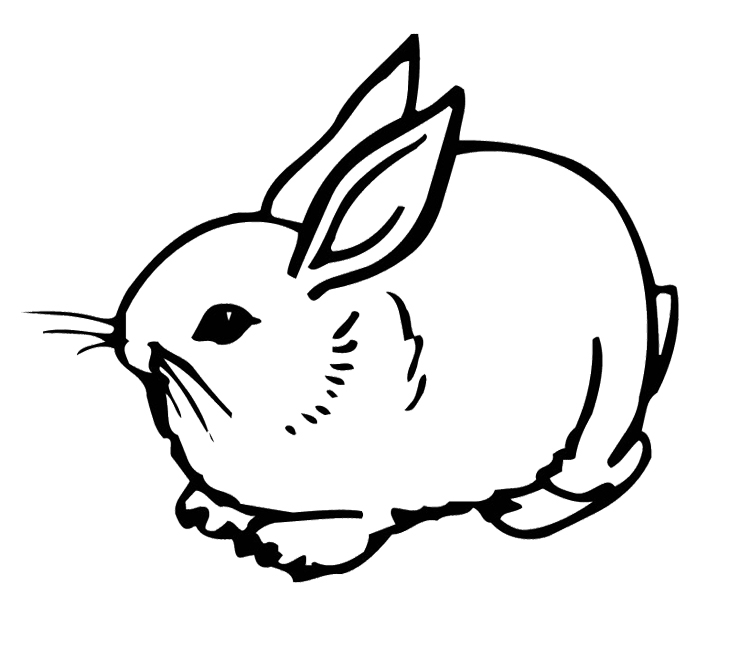 rabbits coloring pages cute rabbit girl coloring page kids