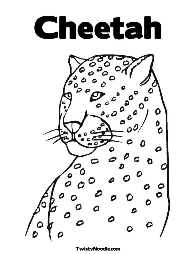 cheetah pictures to colour az coloring pages