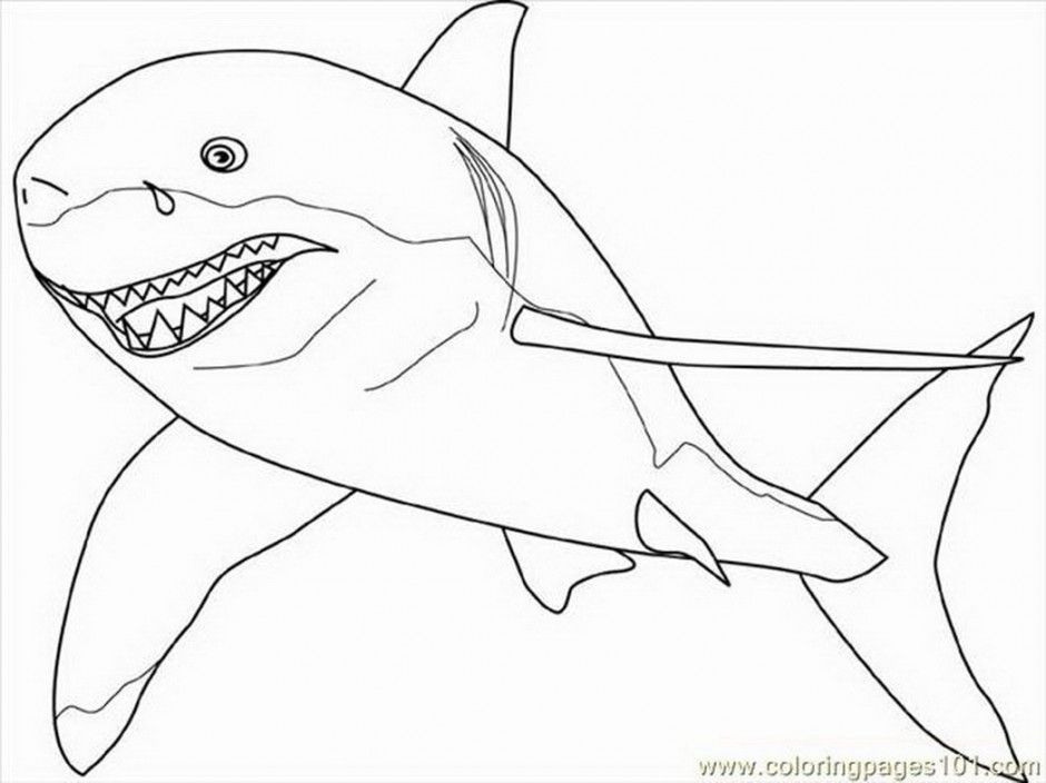 colour in shark animal coloringz 231116 great white shark coloring