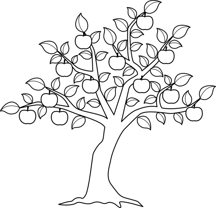 apple tree ready for harvest coloring for kids tree coloring