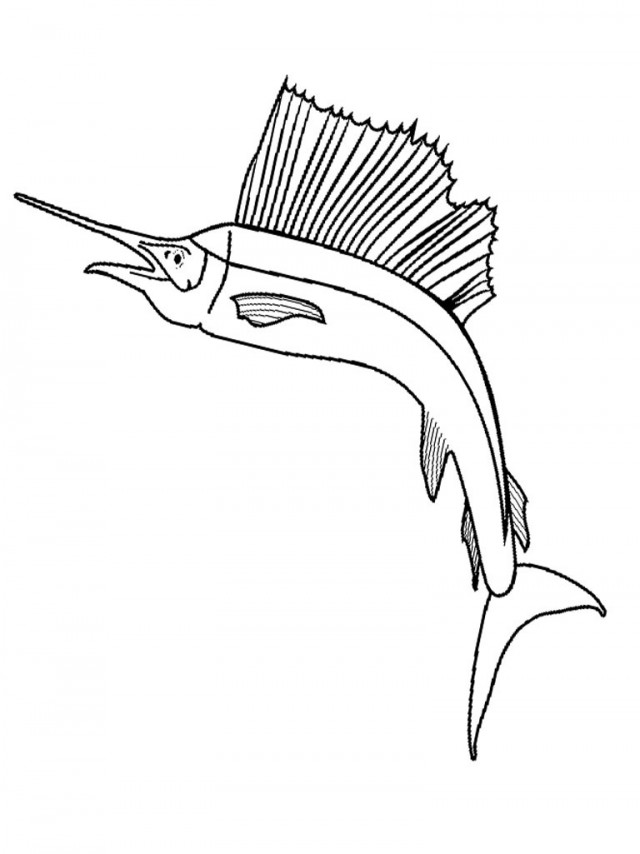 bass fish coloring pages az coloring pages