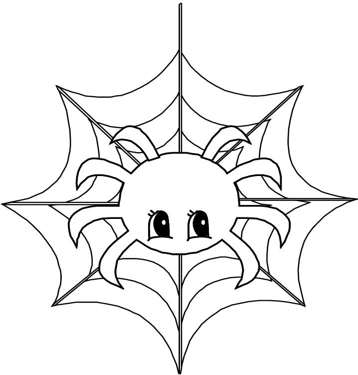 printable cute animal spider coloring page animals coloring