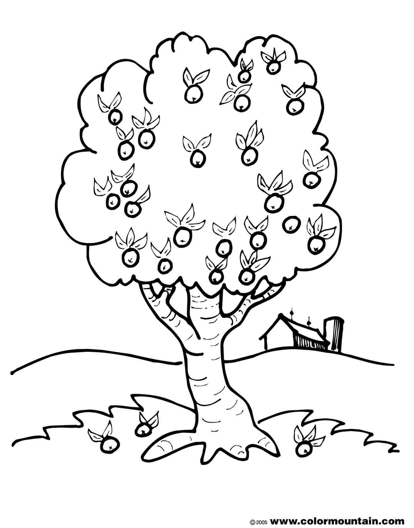 Simple Tree Coloring Page