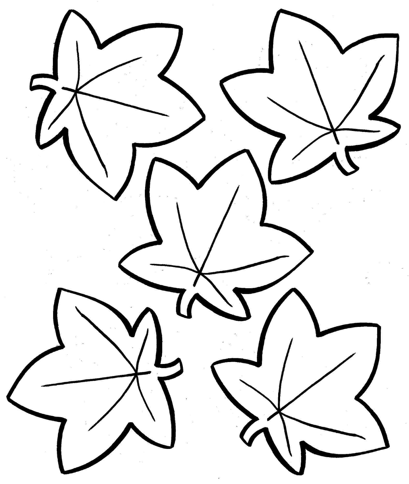 Large Leaf Coloring Page