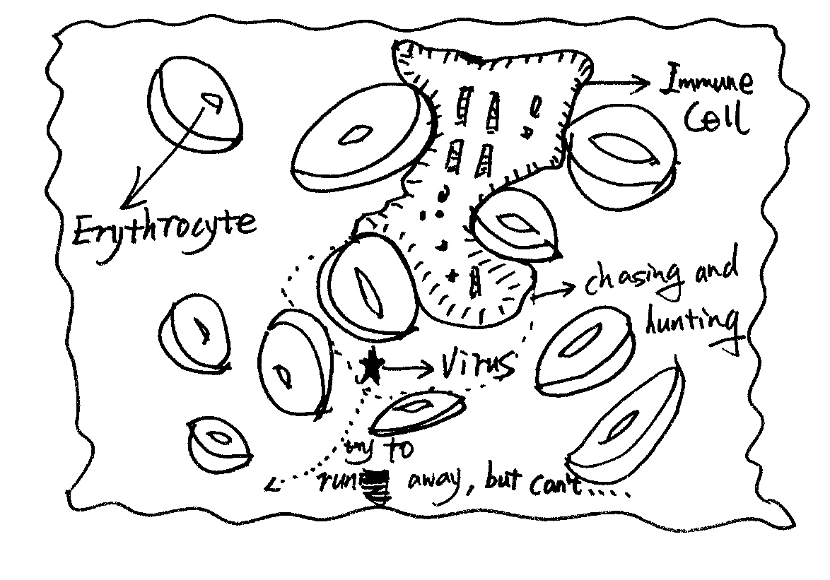 Plant Cell Coloring Pages