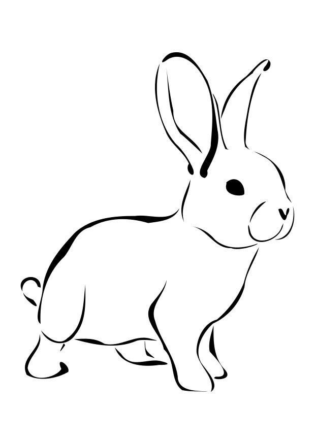 baby bunny coloring pages az coloring pages