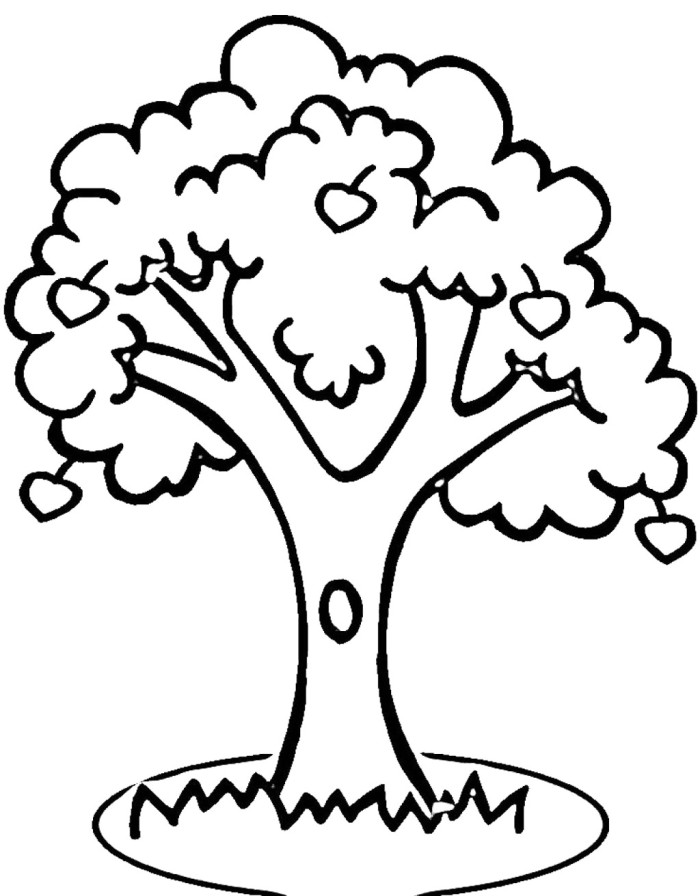 an apple tree and an enclosure coloring for kids tree coloring
