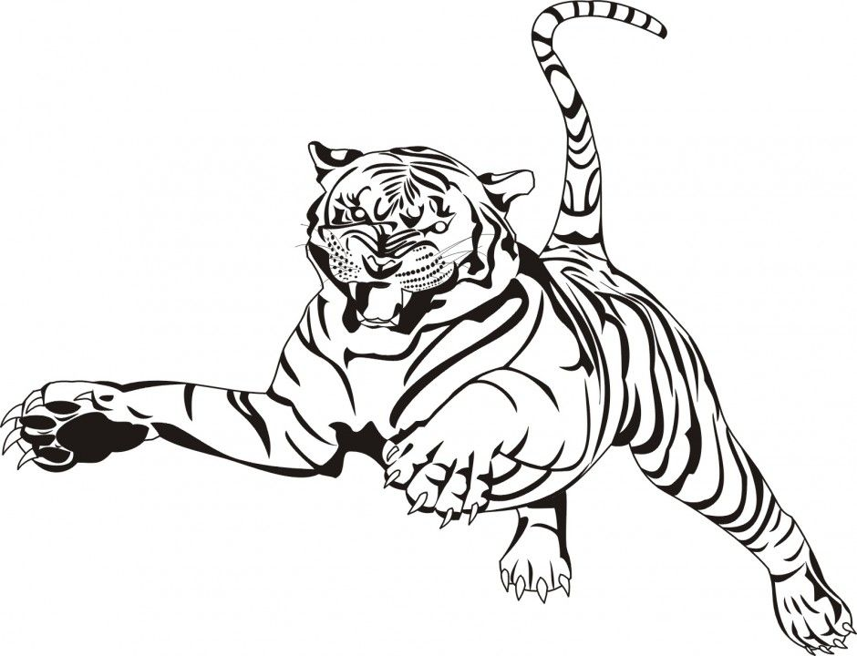 realistic baby tiger coloring pages jaguar animal tiger coloring