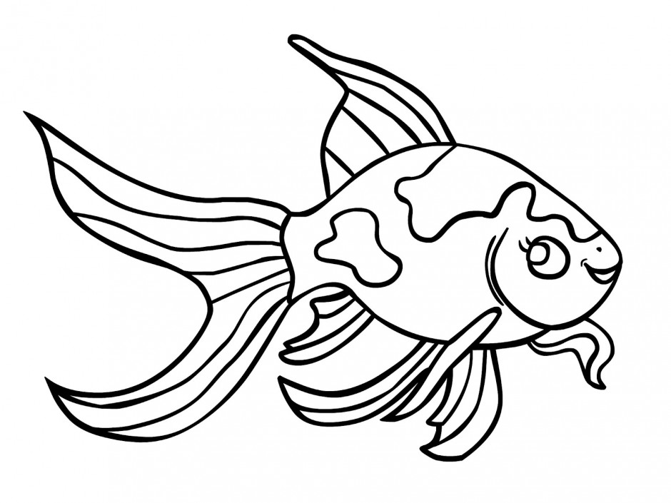 big coloring pages of fish cooloring com