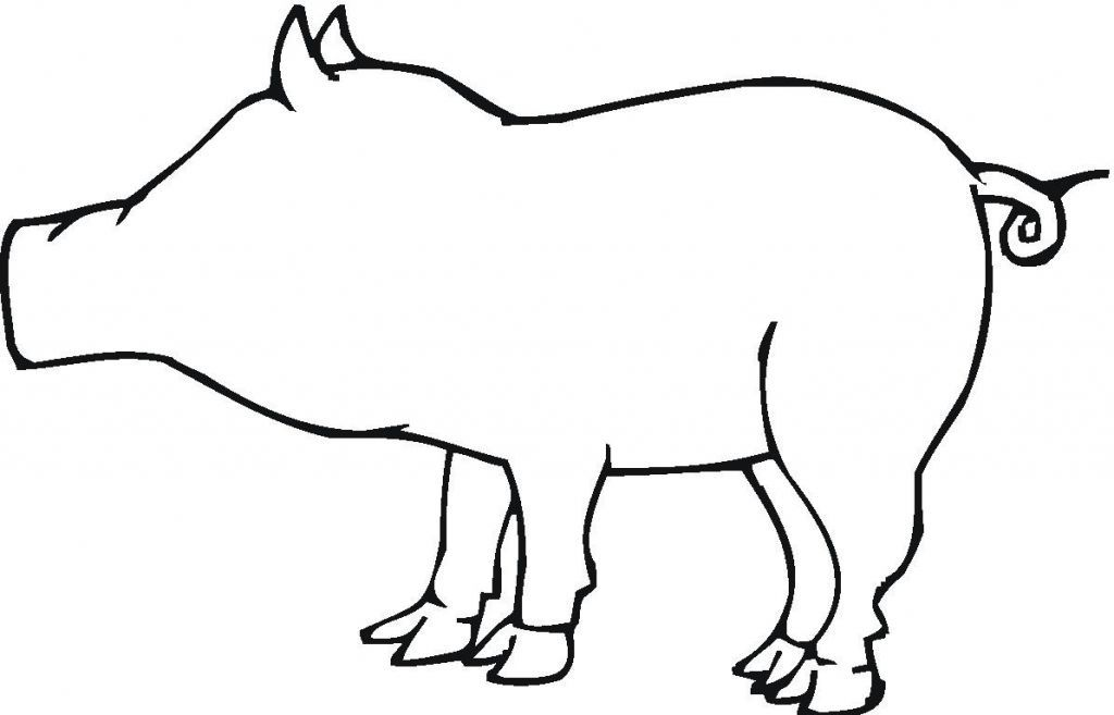 pig face coloring page printable coloring sheet anbu coloring