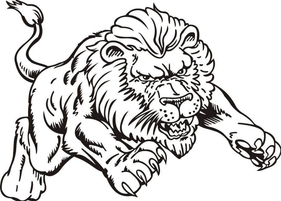 male lion coloring pages furthermore realistic sloth coloring page, coloring pages