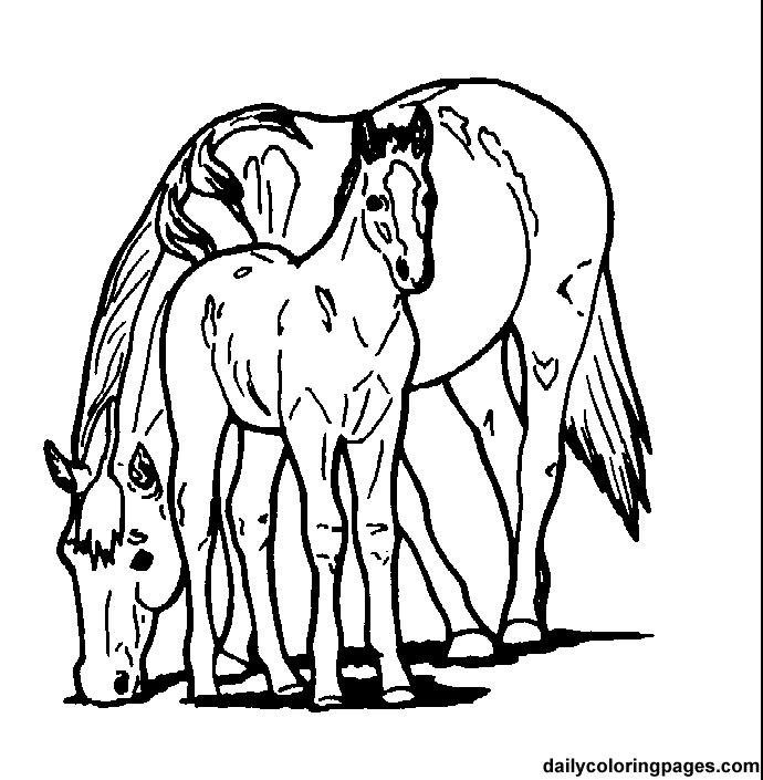 horse coloring page az coloring pages