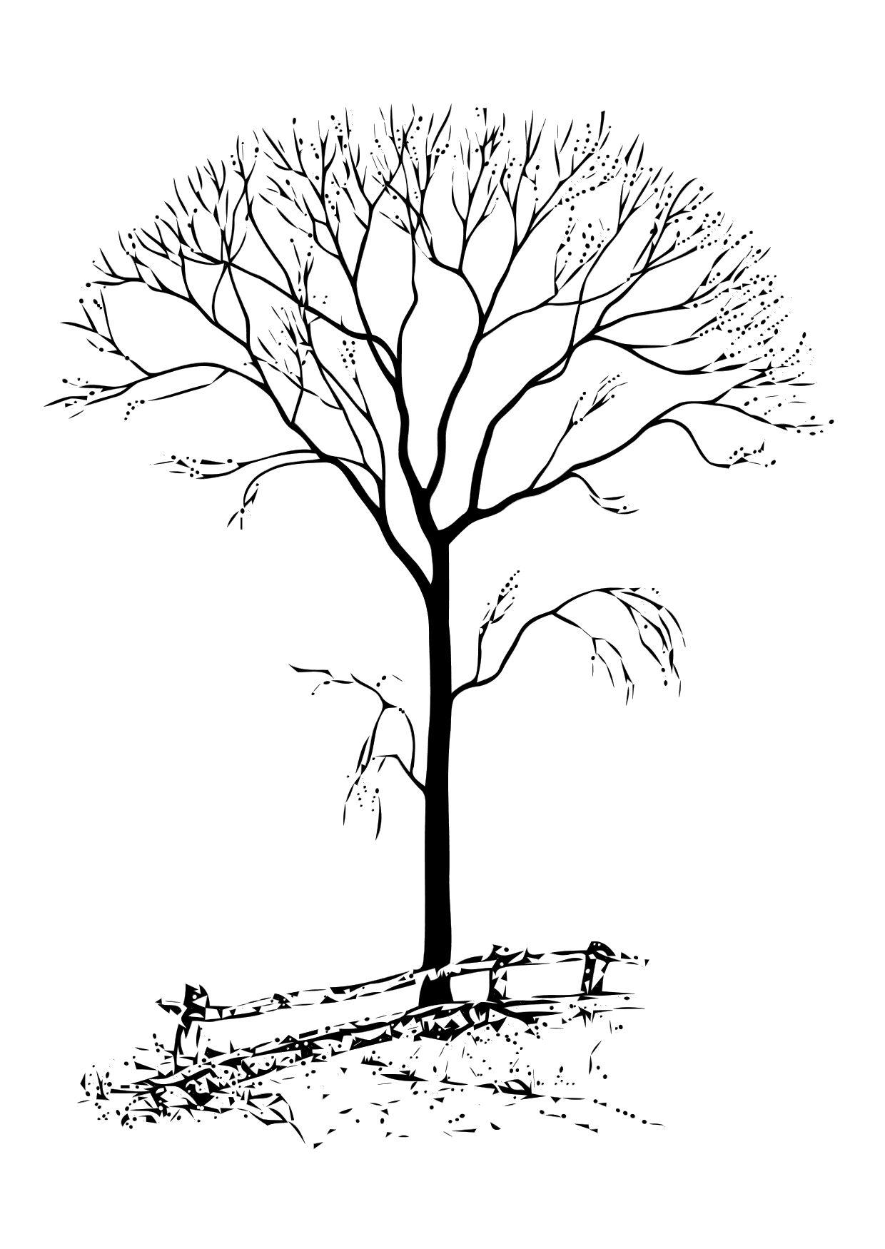 coloring page bare tree az coloring pages