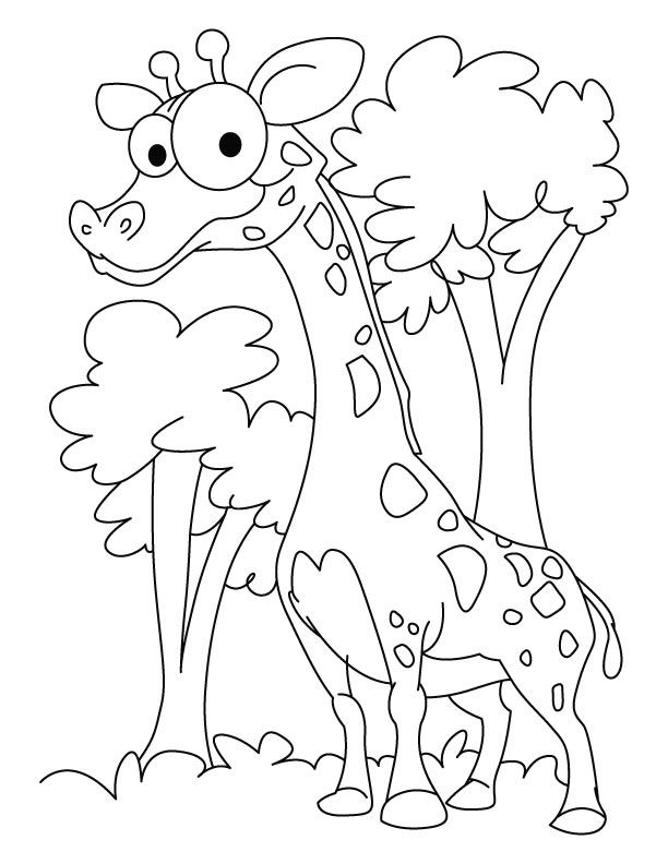 picture of a giraffe to color az coloring pages