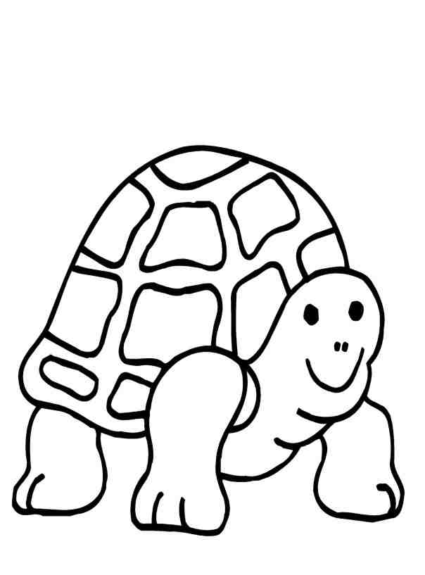 coloring pages turtle az coloring pages