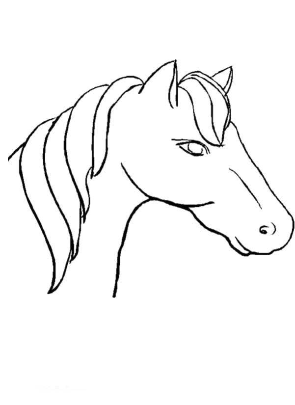 horse head coloring page az coloring pages