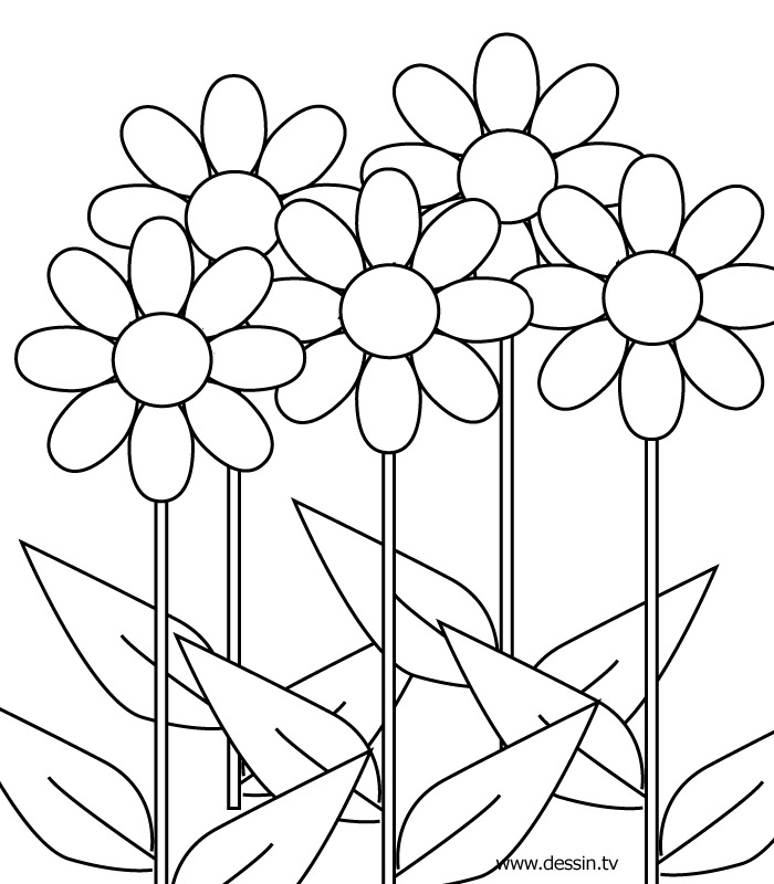coloring pages for girls 10 and up az coloring pages