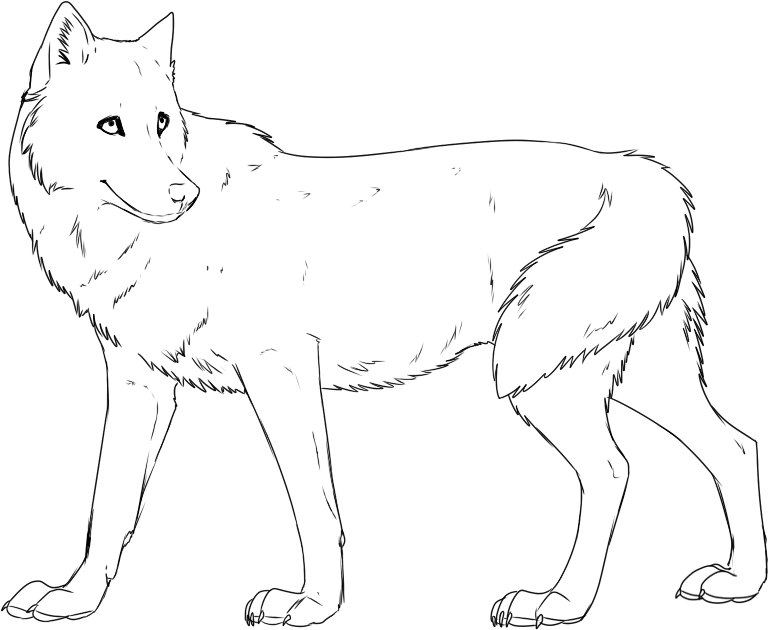 printable wolf pictures az coloring pages