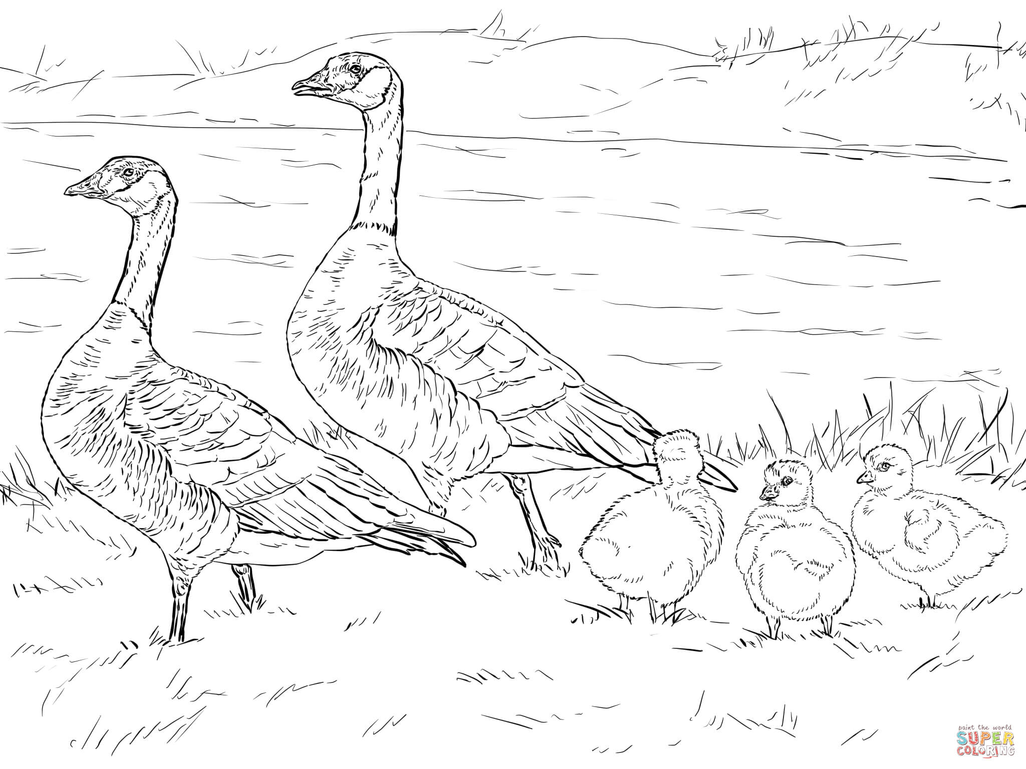nene goose coloring page free printable coloring pages