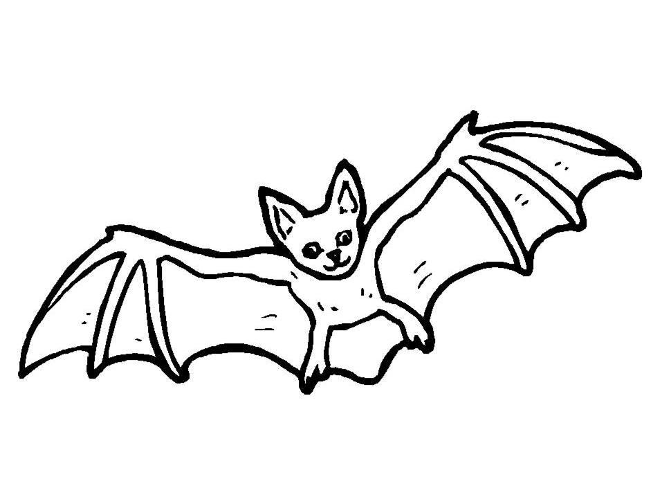 bat pages az coloring pages