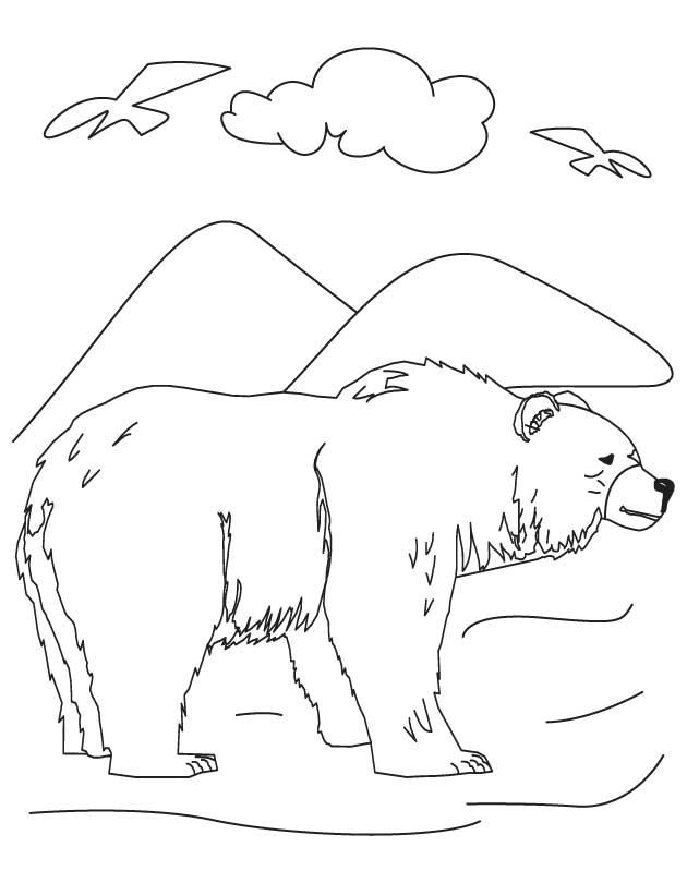 black bear coloring pages az coloring pages