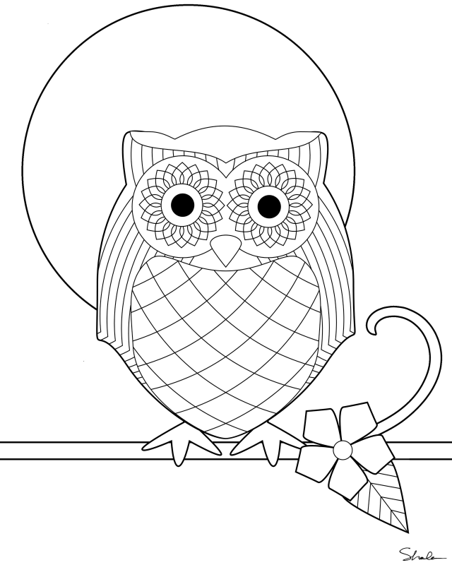 snowy owl coloring pages az coloring pages