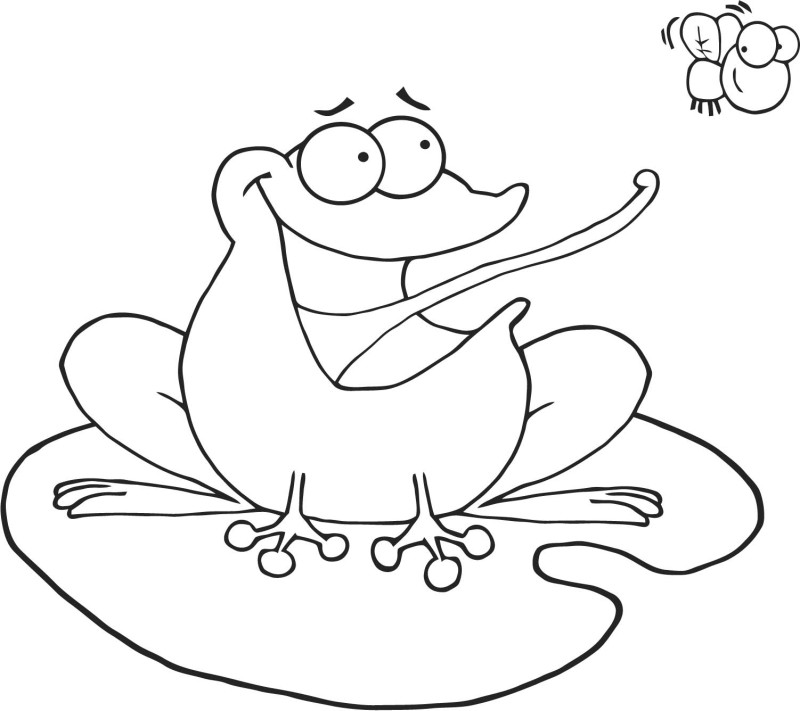 frog cacthing fly coloring page free amp printable coloring pages