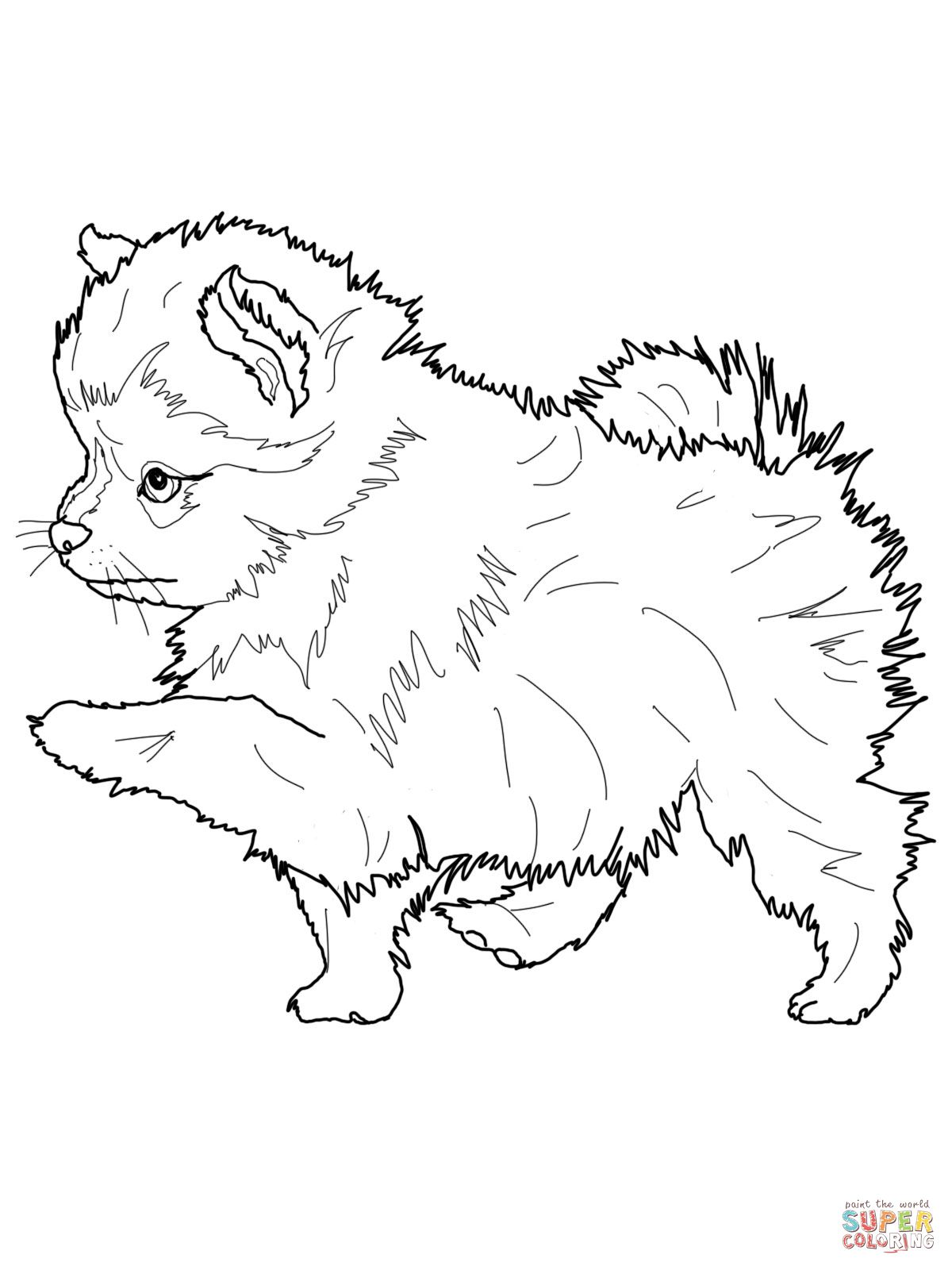 cute husky puppies coloring pages simon - Cute Husky Puppies Coloring Pages