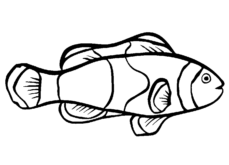 clownfish coloring page az coloring pages