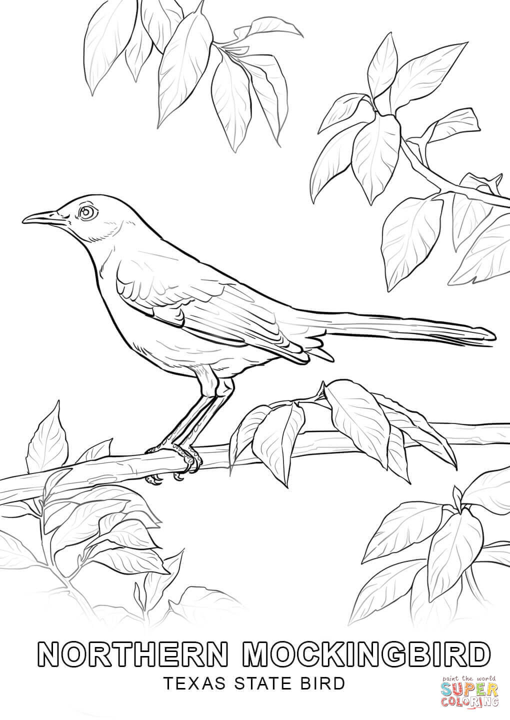 texas coloring pages texas coloring page verdao co