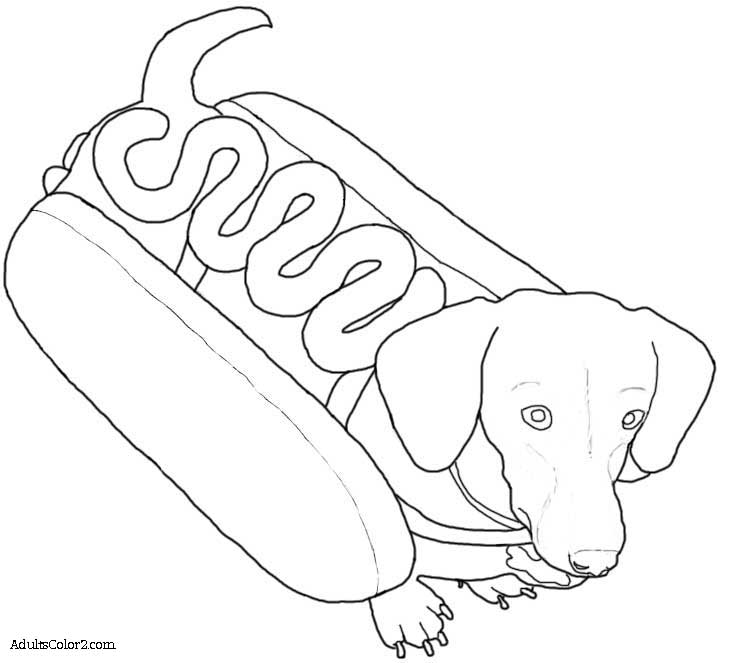 printable coloring pages of dachsunds az coloring pages