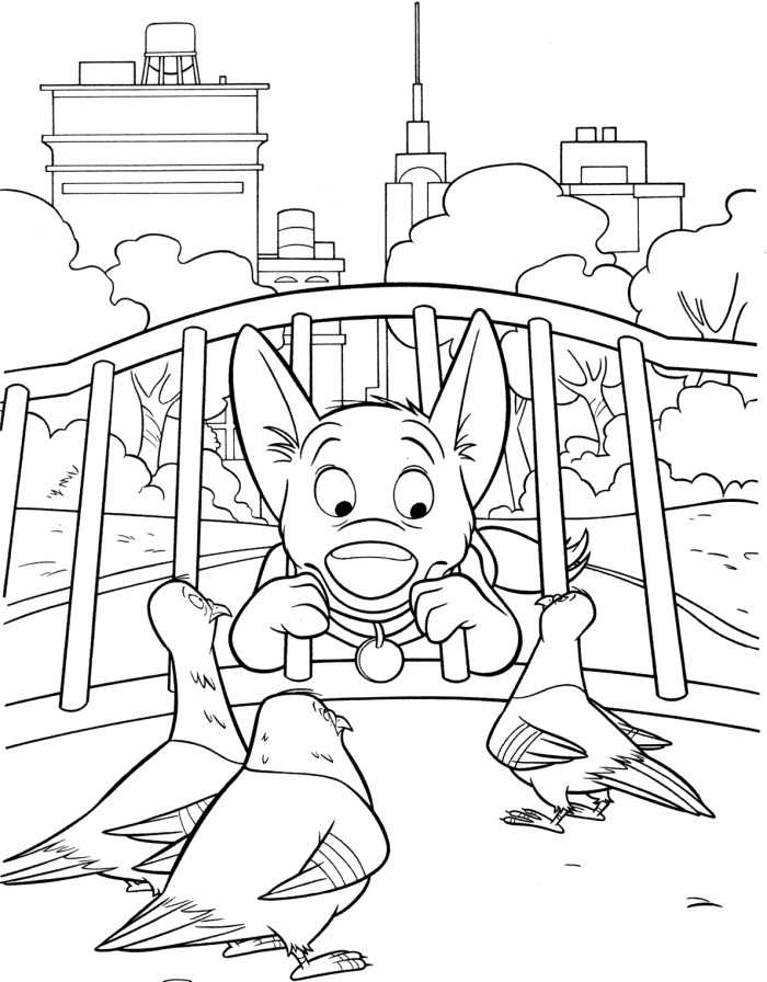cartoon bolt the movie coloring pages coloring pages